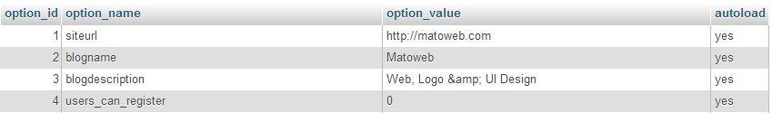 06-wp_options.jpg