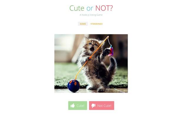 cute_or_not.jpg