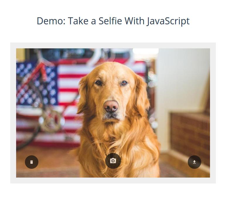 take-a-selfie-demo.png